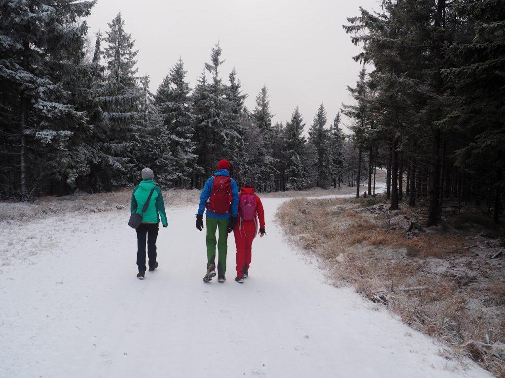 Szeroka ścieżka na Jagodną