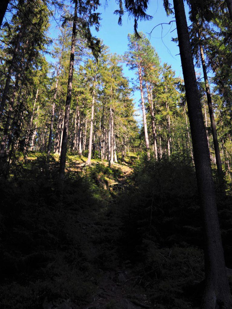 Strome podejście od Bobrownik
