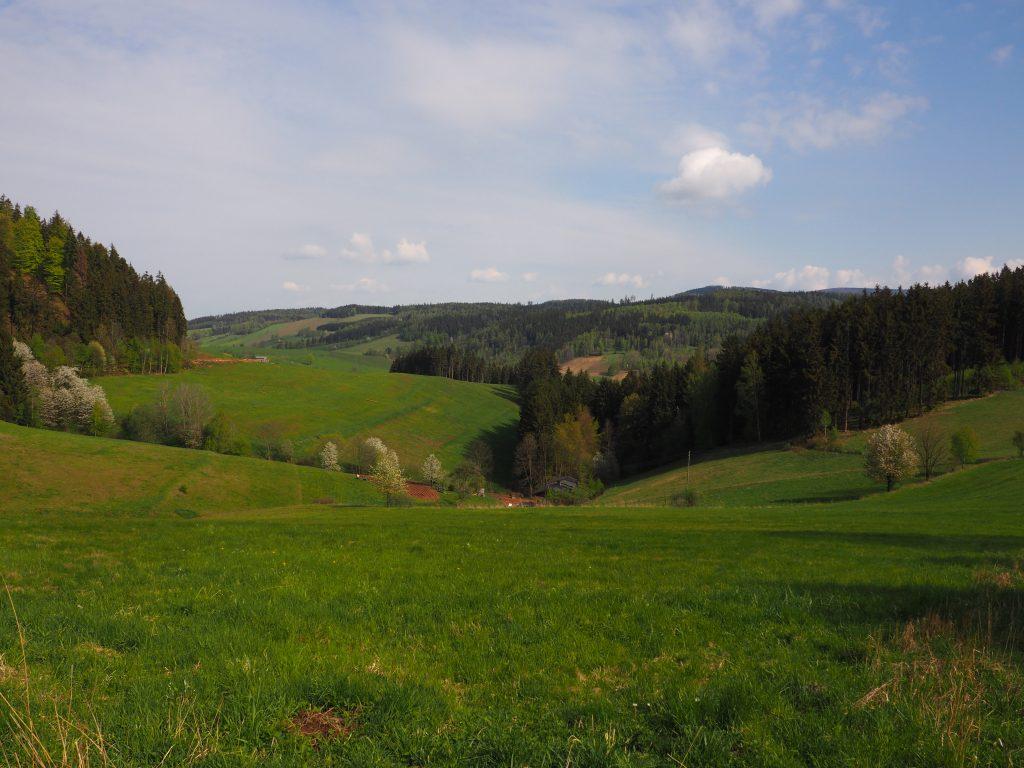 Wzgórza Włodzickie