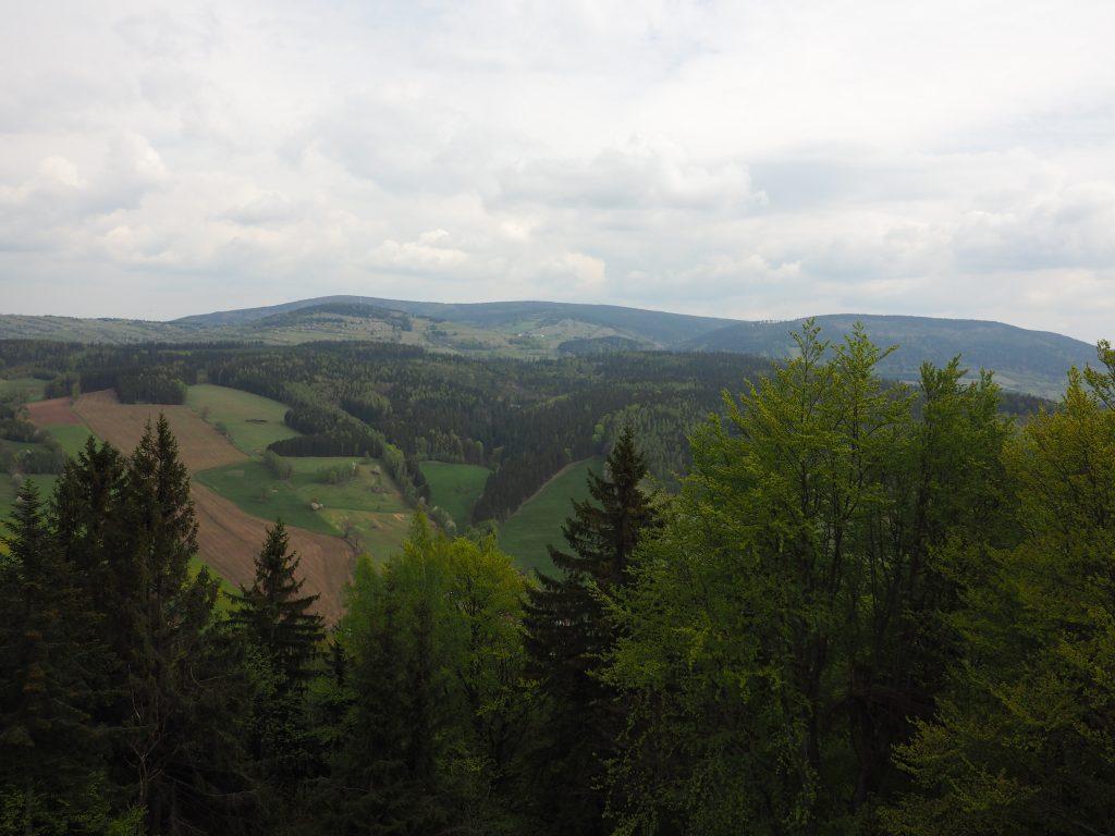 Widok na Góry Sowie z wieży widokowej na Włodzickiej Górze