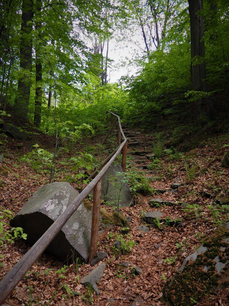 Ścieżka wokół zamku