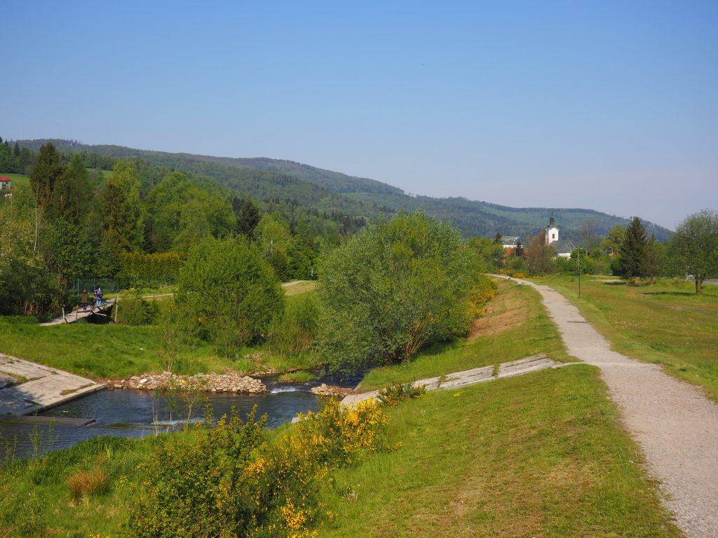 Potok Holcyna
