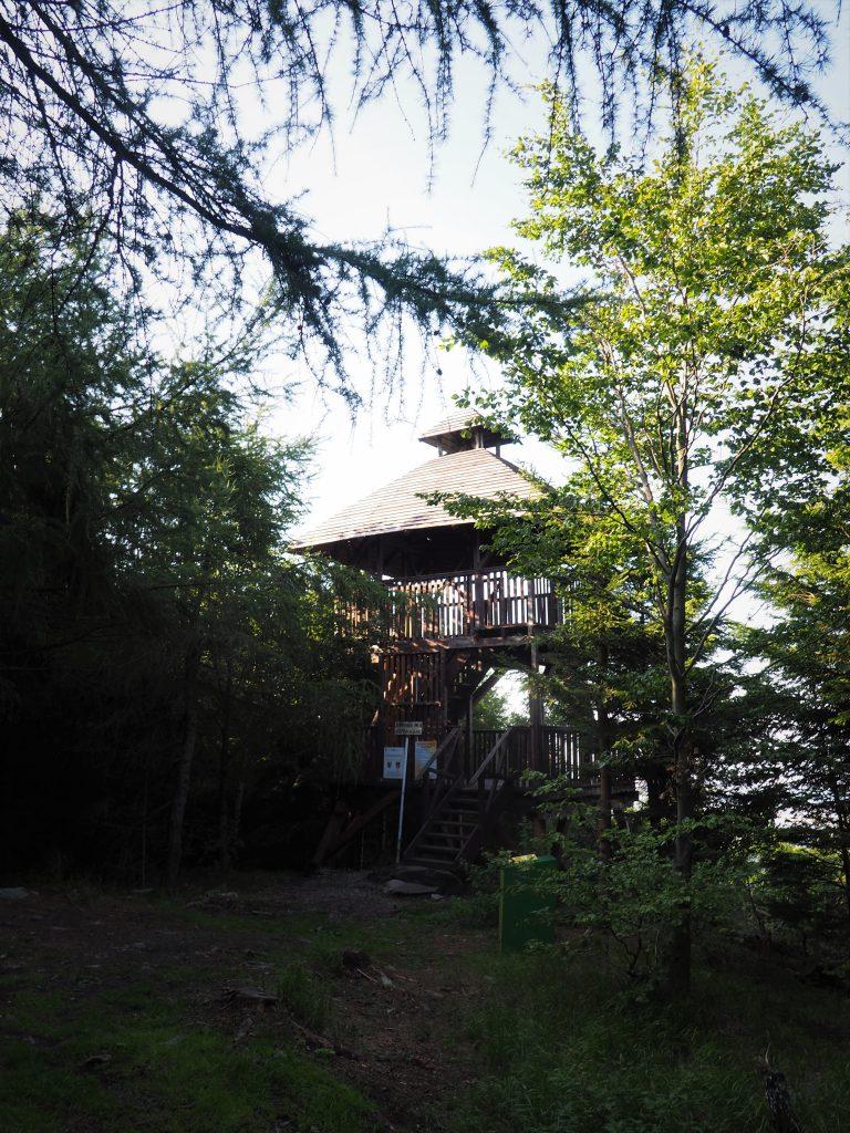 Wieża widokowa na Jaworniku Wielkim