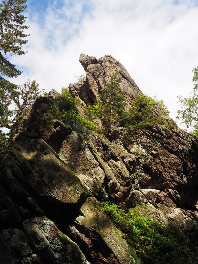 Rzepicha- Kościelec w Górach Bialskich