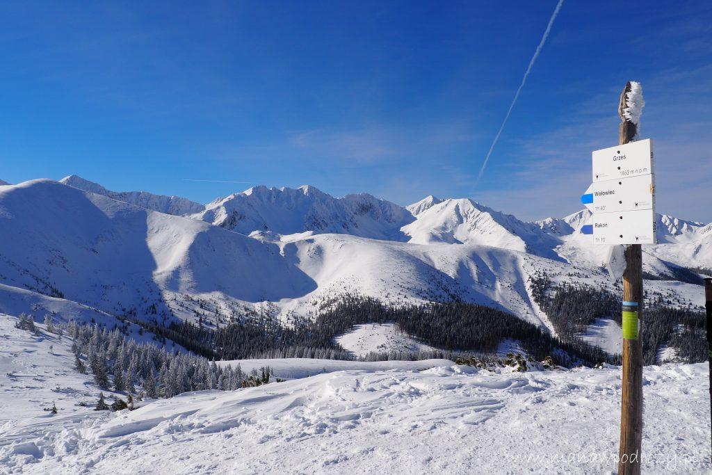 Zimowa panorama z Grzesia