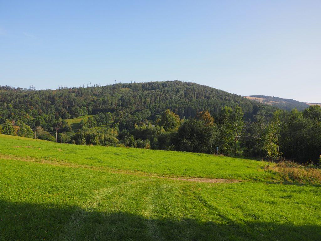 Na łąkach powyżej Petrovic