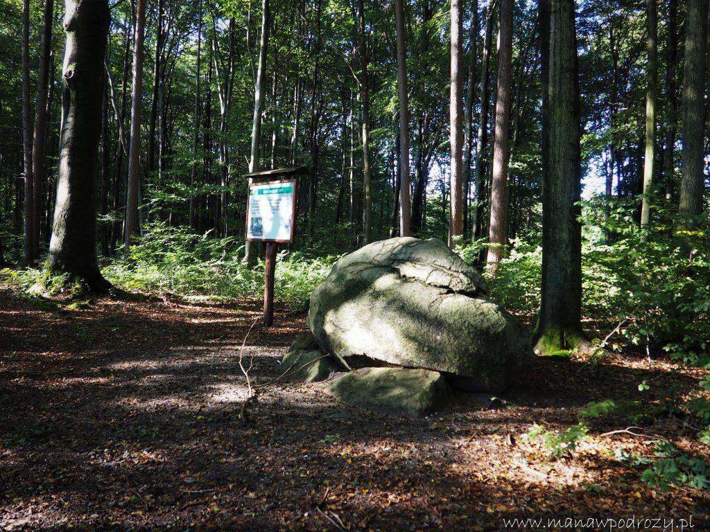 Głaz narzutowy w Parku w Lipnie- jego obwód to ponad 8 metrów!