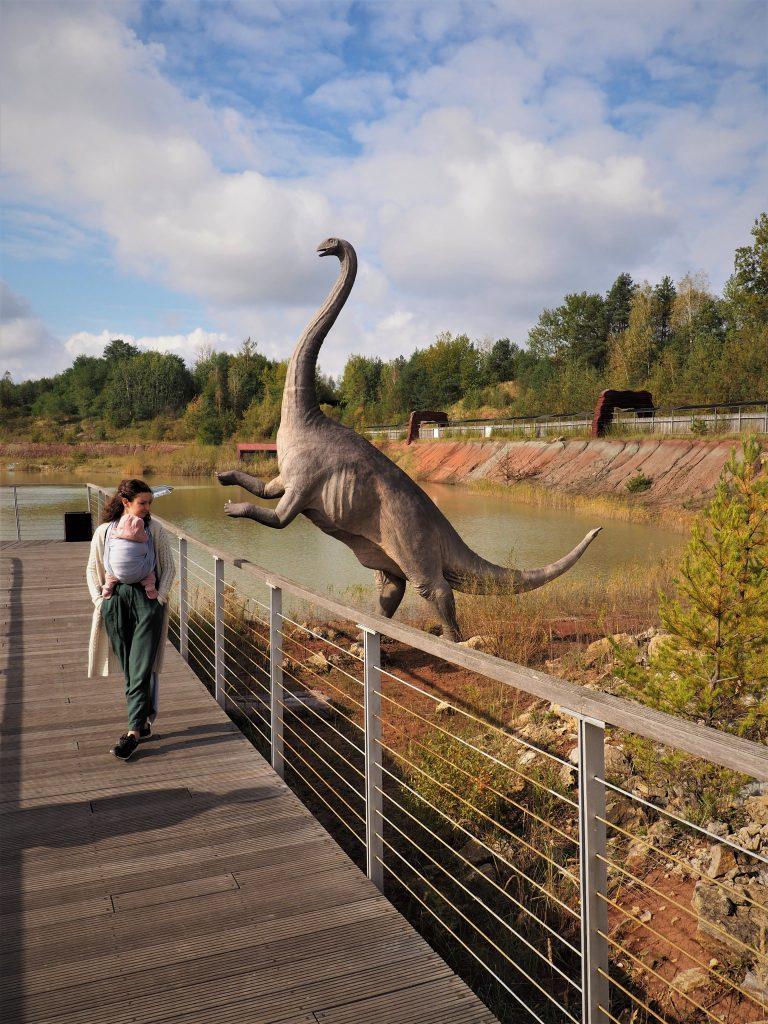 Wędrując po JuraPark Krasiejów możemy podziwiać naturalnych rozmiarów