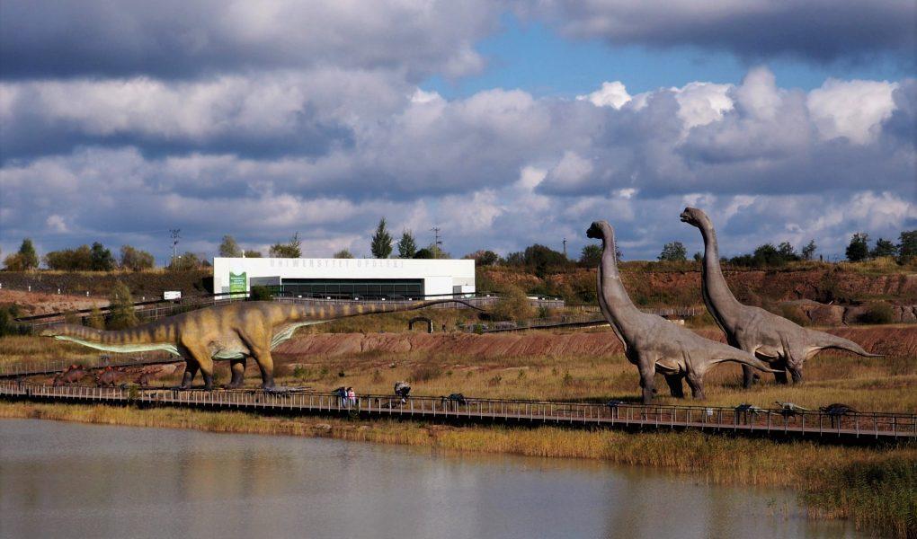 JuraPark Krasiejów to 40 ha żywej historii epoki mezozoicznej!