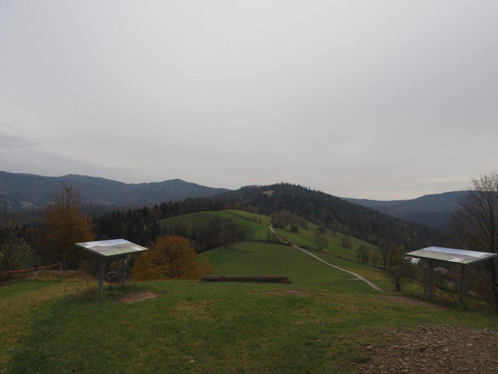 Panorama ze szczytu Cienkowa Niżnego