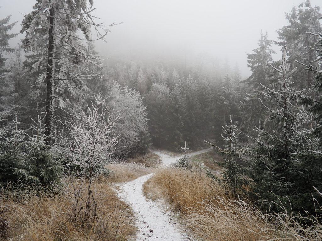 Wokół nas, bajeczny zimowy krajobraz
