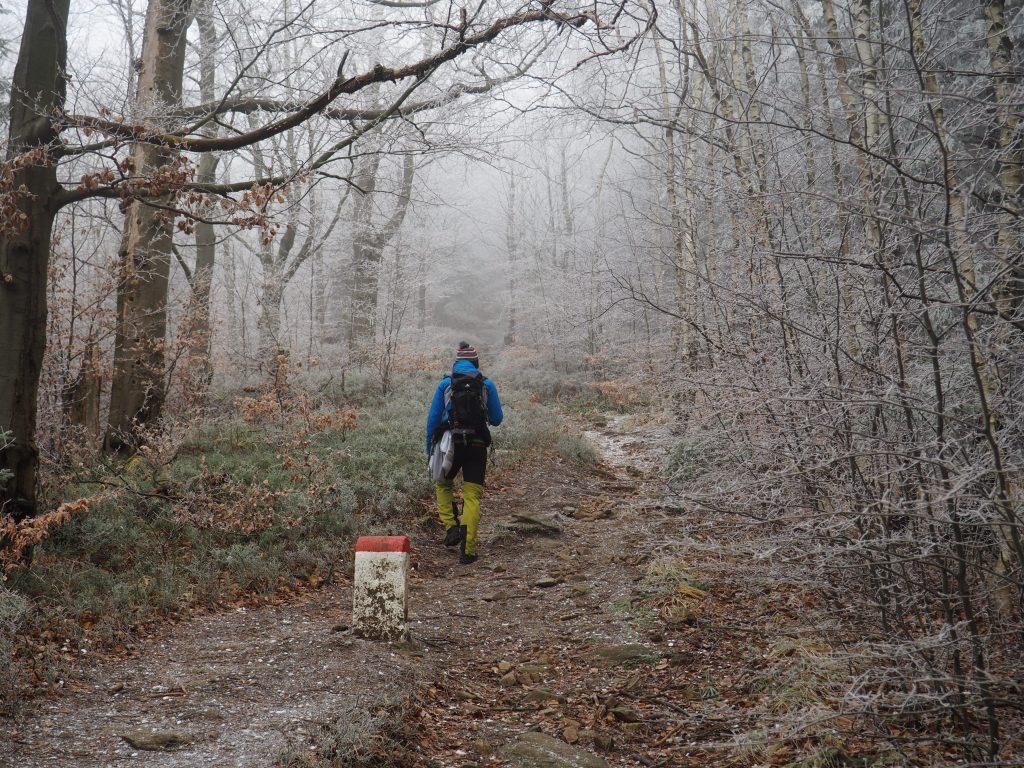 Wzdłuż granicy polsko- czeskiej na szczyt Kowadła