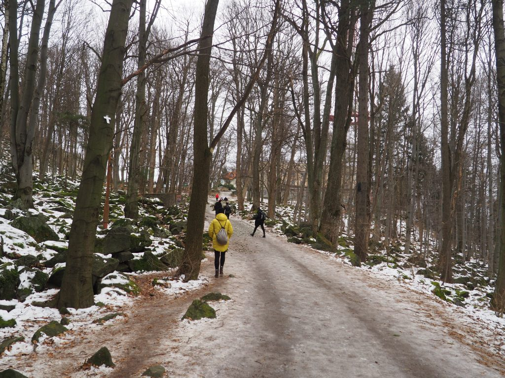 Żółtym szlakiem na Przełęcz Tąpadła