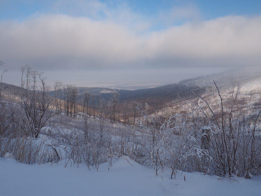 Widok na Dolinę Bystrego Potoku z Przełęczy Mokrej