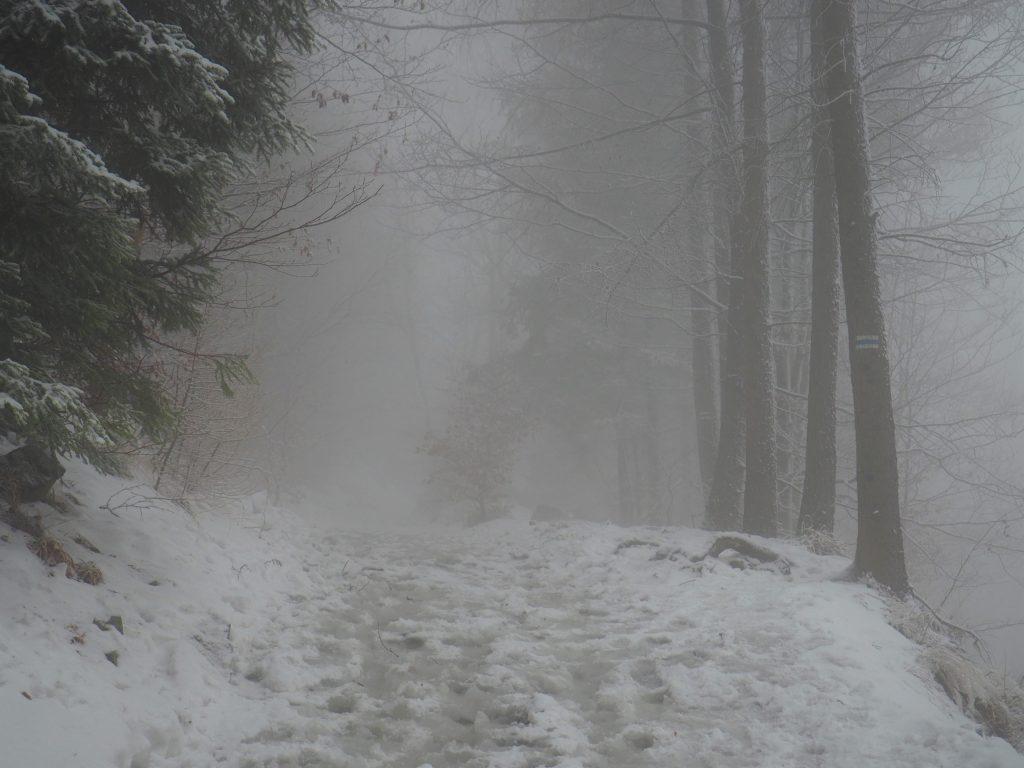 Początkowo wędrowaliśmy we mgle...