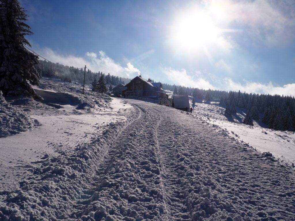 W stronę Hali Śnieżnickiej