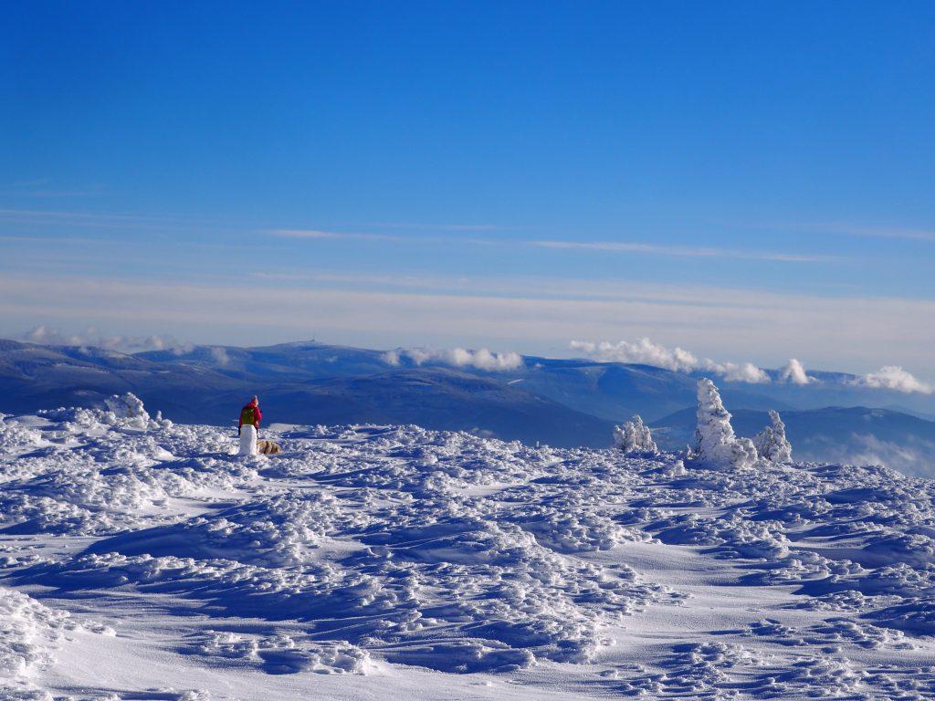 Widoki ze szczytu Śnieżnika w kierunku Gór Bystrzyckich