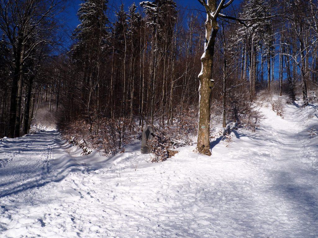 Na Przełęczy Rosochatka
