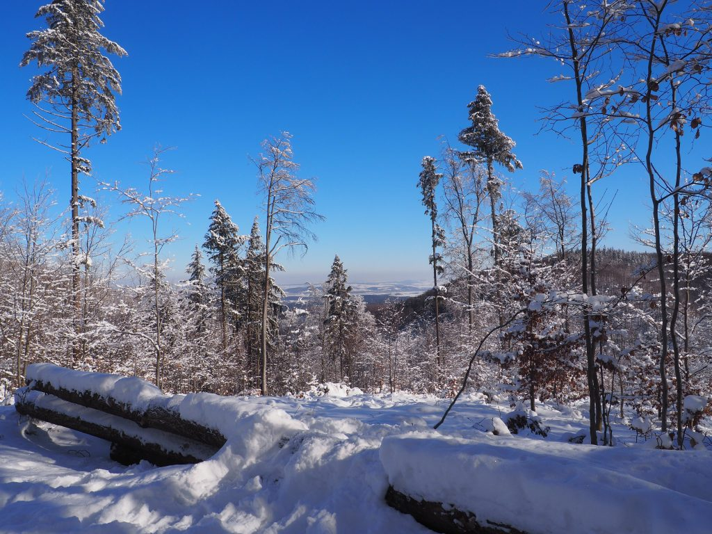W kierunku Jeziora Otmuchowskiego