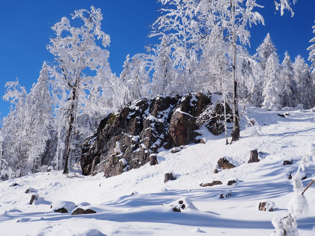 Ciekawa formacja skalna w okolicy Przełęczy pod Trzeboniem