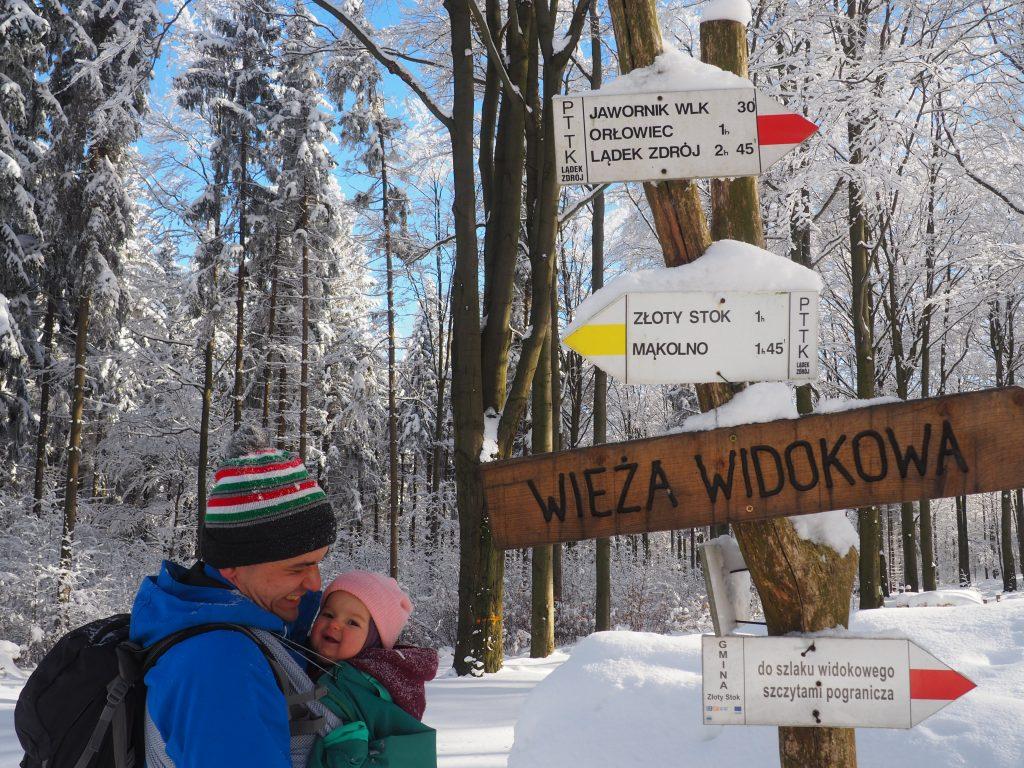 Z Przełęczy pod Trzeboniem na Jawornik Wielki jest zaledwie 30 minut drogi