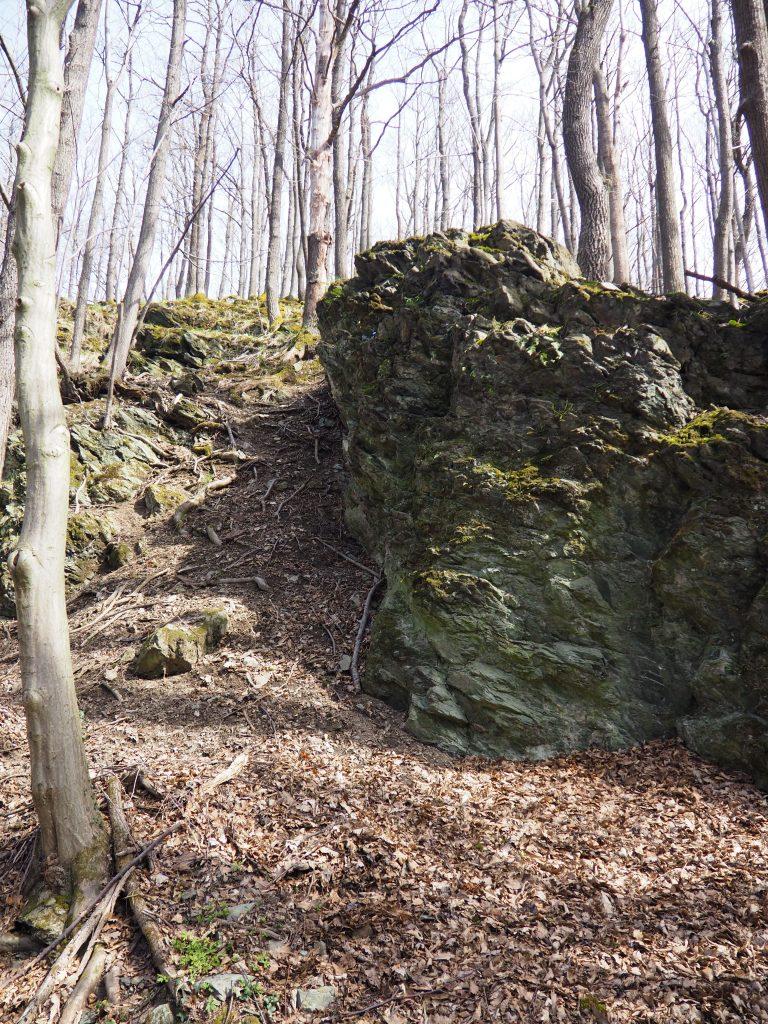 Rezerwat Przyrody nad Groblą