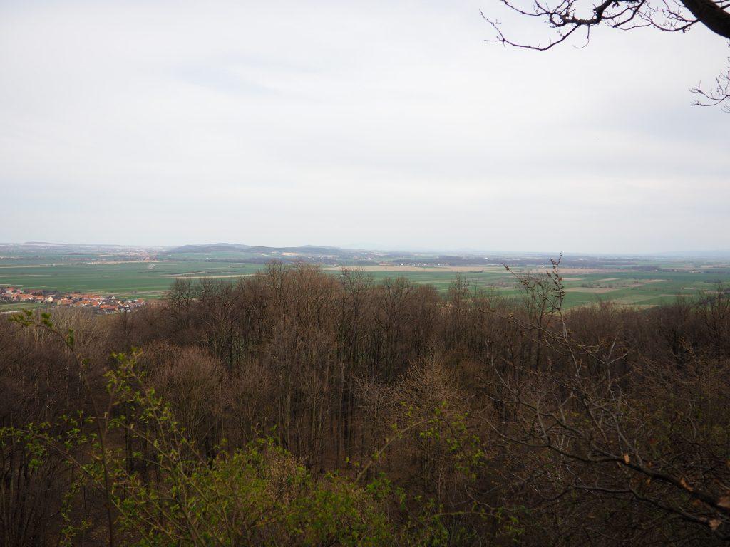 Panorama z punktu widokwoego Bazlatowe Wzgórza