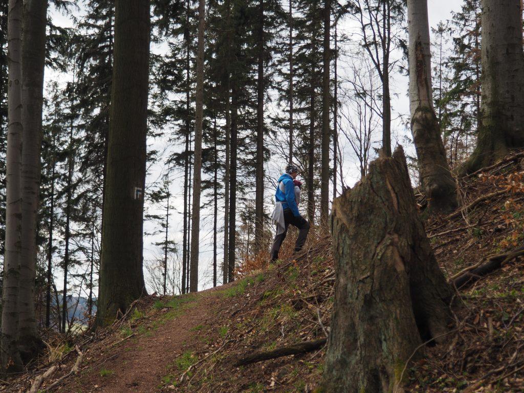 Strome podejście na Jedliniec