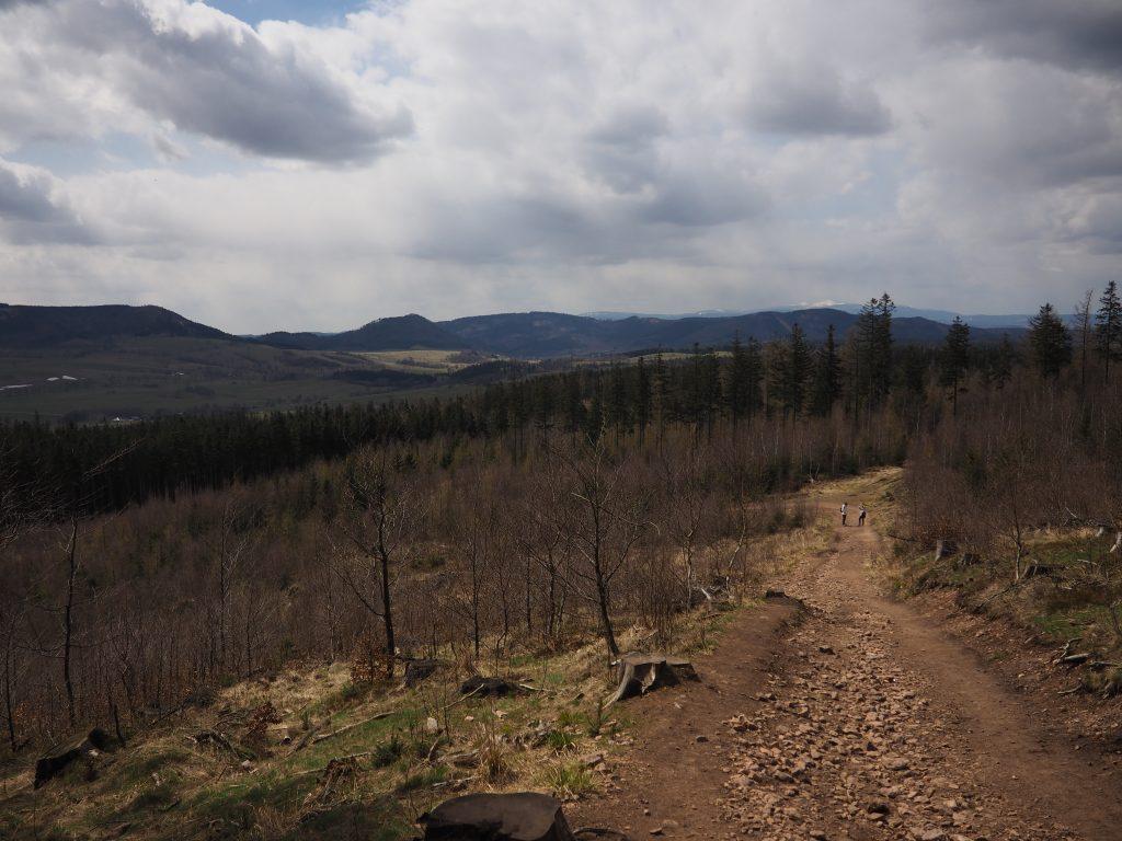 Widok z czarnego szlaku na Borową w kierunku Gór Kamiennych