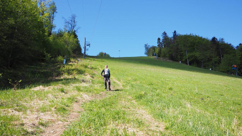 Zielony szlak częściowo prowadzi po stoku narciarskim