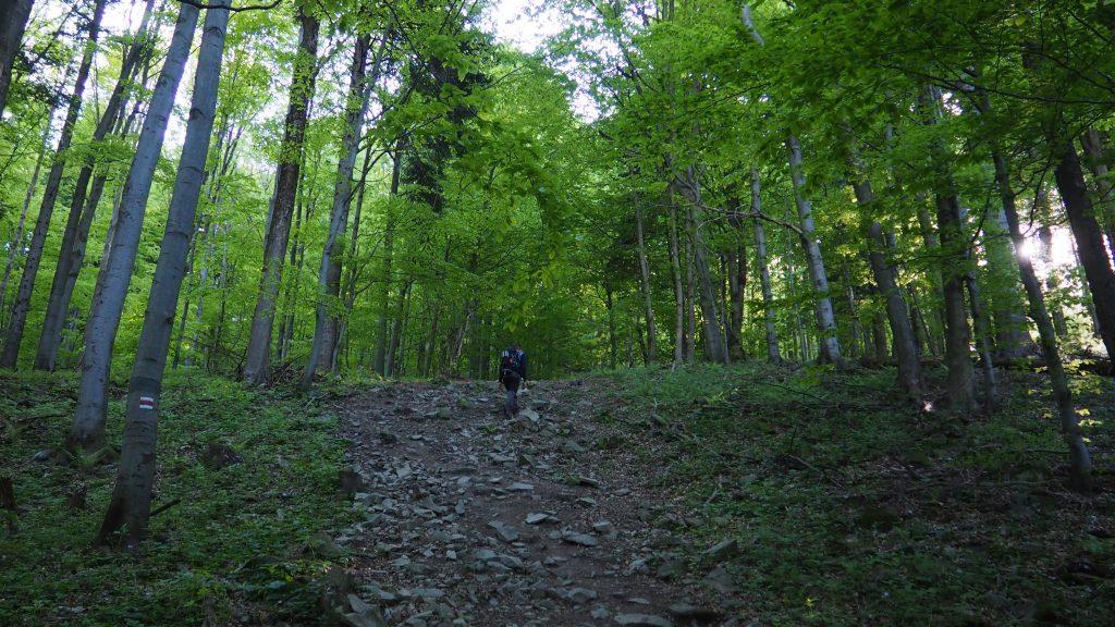 Początek stromego podejścia na Lackową