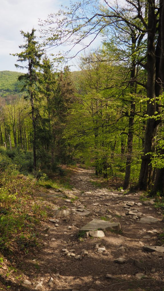 Zejście w kierunku Przełęczy Pułaskiego