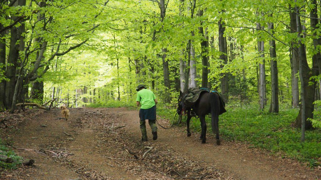 Z koniem i psem po szlakach Beskidu Niskiego