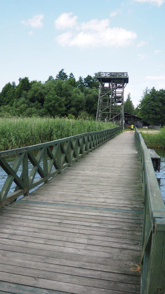 Jedna z wież widokowych nad brzegiem Jeziora Łebsko